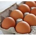 Αυγά XL