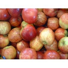 Μήλα Ρουαγιάλ Γκαλά (Royal Gala)