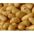 Πατάτες (μαγειρευτά, φούρνο)